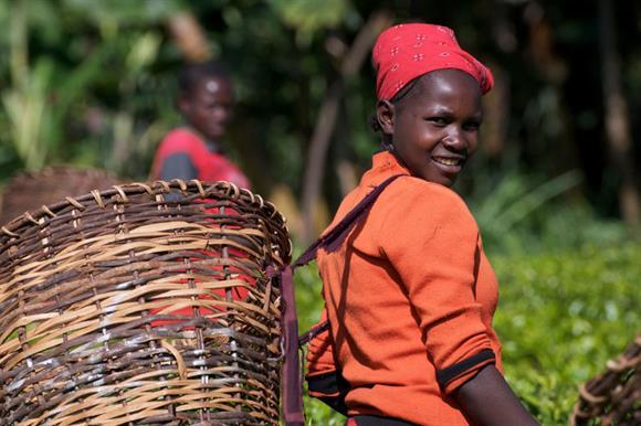 #OneBigTweet will help farmers such as Elizabeth Kithinji