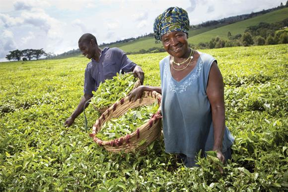 Shared Interest links investors with fair-trade organisations around the world