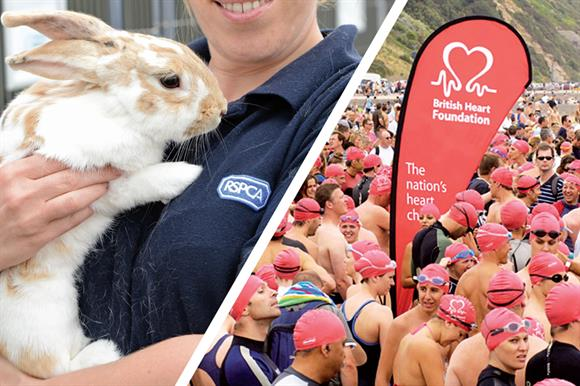 Fined: The RSPCA and the British Heart Foundation