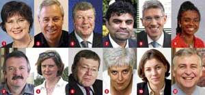 Advisory team: the 12 representatives