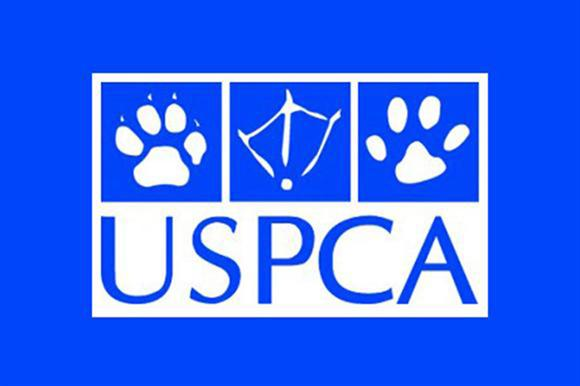 USPCA: now has a larger board