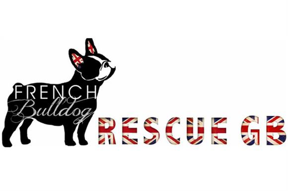 French Bulldog Rescue GB is a new addition to the Charity Commission's register
