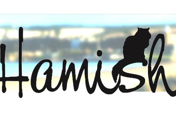 New charity the Hamish McHamish foundation is inspired by a local feline