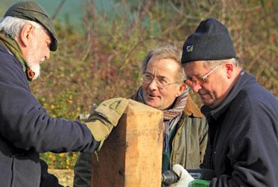 Volunteering by older people