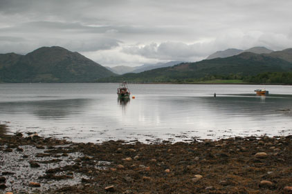 VisitScotland: looking for agency support