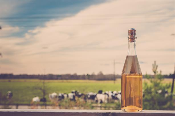NACM: Grayling to represent the National Association of Cider Makers
