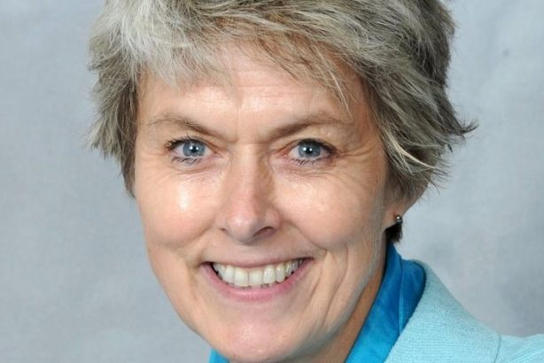 Anne McIntosh: Former Cnservative shadow minister joins Hume Brophy