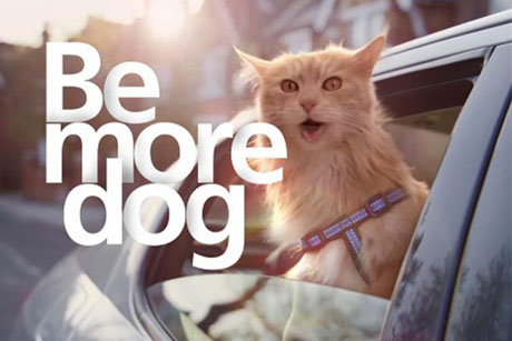 Be more dog: O2's latest ad campaign