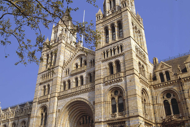 The Natural History Museum: On hunt for PR help (Credit: The Trustees of the Natural History Museum, London)