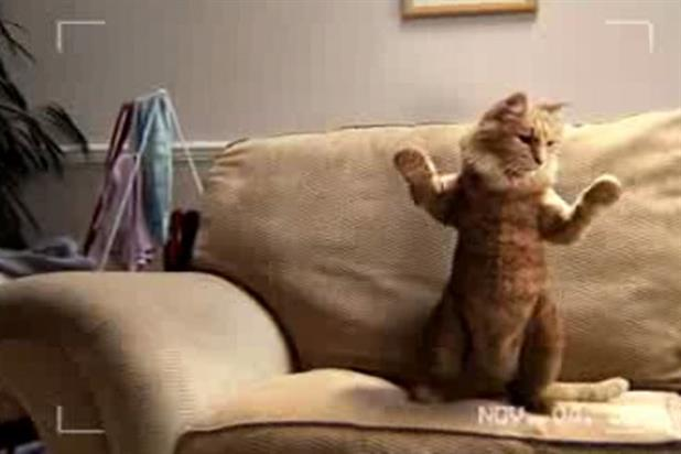 Royal Mail: dancing cat promotes personalised stamps in 2008