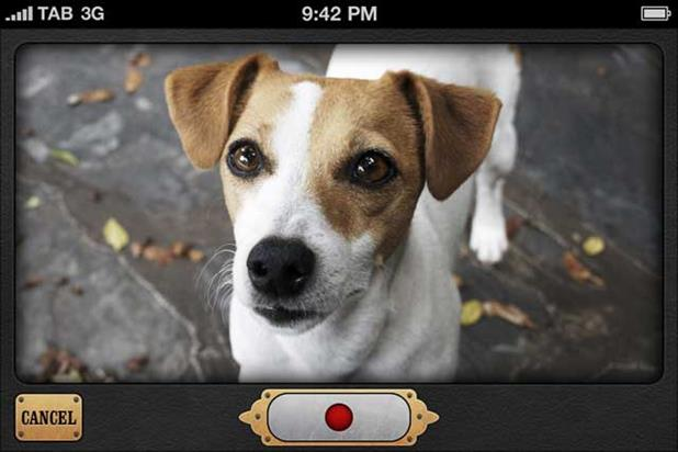 Frijj 'pet translator app' by Grey London