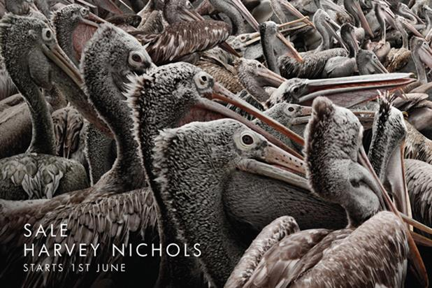Harvey Nichols 'pelicans' by Y&R Dubai