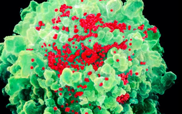 Pharmacokinetic boosting agents are used with some HIV drugs to prolong their action.  | SCIENCE PHOTO LIBRARY