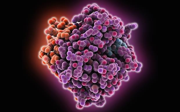 Idarucizumab binds to dabigatran approximately 300-fold more potently than dabigatran does to thrombin.   SCIENCE PHOTO LIBRARY