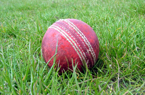 Sticky Wicket cricket match to unite industry