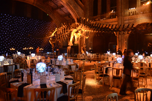 Picture gallery: Wildlife Photographer of the Year awards 2011 at Natural History Museum
