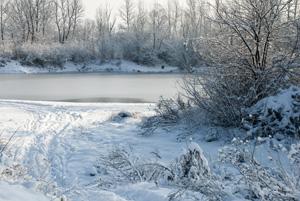 Snow blamed for Lapland theme park's closure