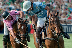 Rhubarb secures exclusive deal with Mint Polo in the Park