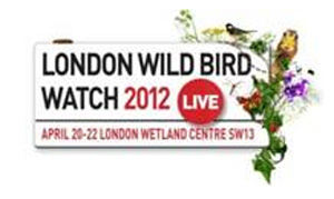Upper Street Events to launch bird watching event