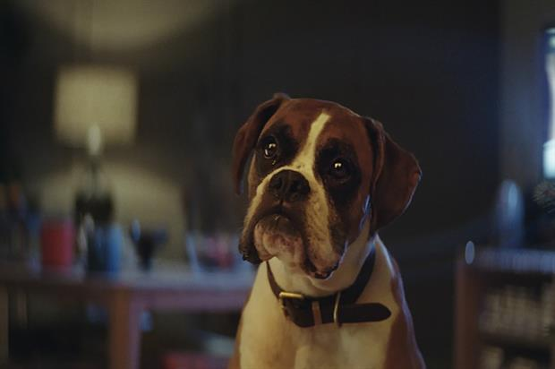 Buster the Boxer: VR experience for John Lewis Christmas ad