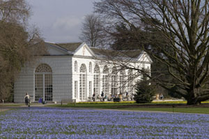 Kew Gardens is looking for a security supplier for its events