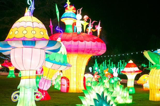 Chiswick's Magical Lantern Festival opened yesterday (3 February)