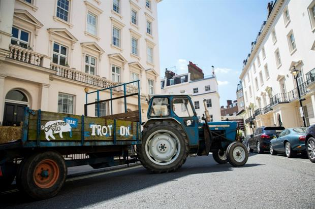 Orchard Pig to offer Londoners alternative taxi service