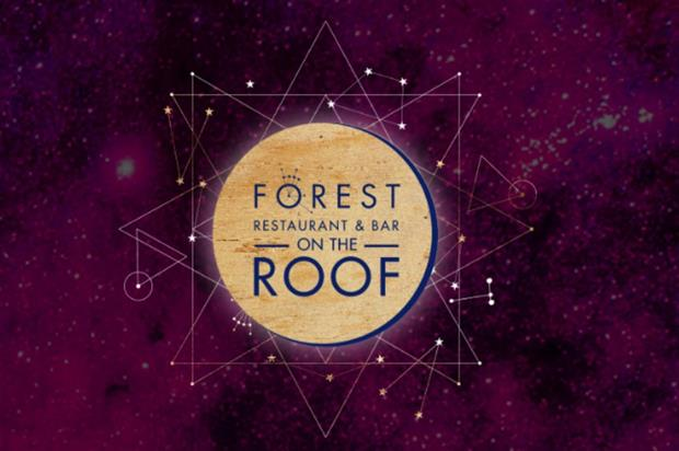 The forest-themed pop-up will showcase foraging and foresting techniques (selfridges.com)