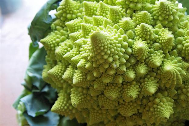 The Broccoflower boasts a vivid colour and interesting texture (Creative Commons: Karen Booth)