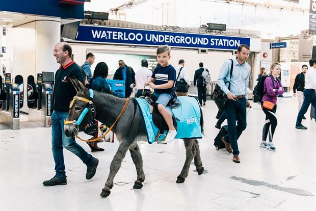 The donkeys have travelled from their native Blackpool to London