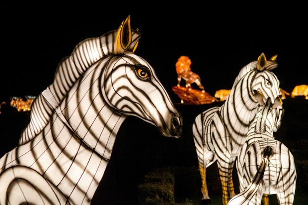 Longleat to run Festival of Light with 50th anniversary finale