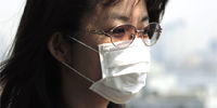 Swine flu (Photograph: ANDY CRUMP/SCIENCE PHOTO LIBRARY)