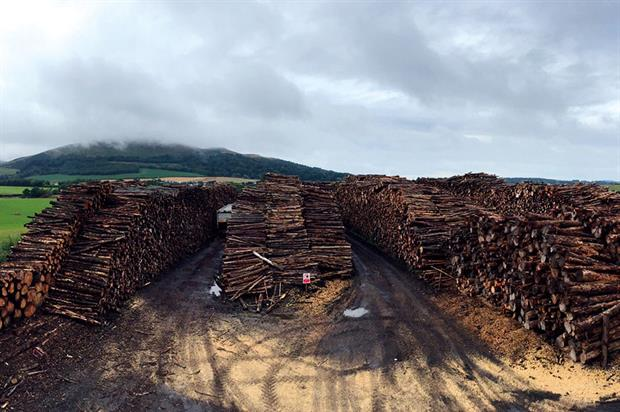 Pentland Biomass: launched by Pentland Plants owner David Spray to source wood for his company as well as other businesses taking a similar leap of faith into biomass - image: Pentland Biomass