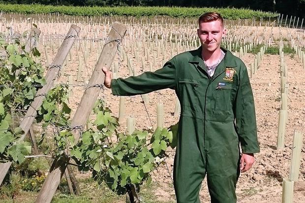Viticulture apprentice, Jacob Evans - image: Plumpton College