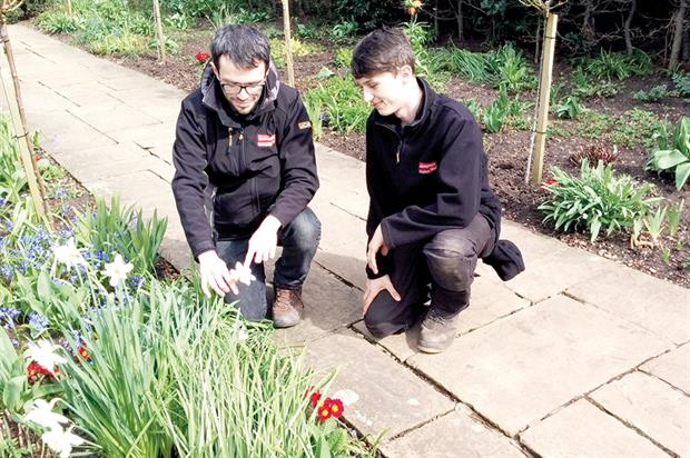 New Place: Pershore College graduate Christopher Cunningham (left) and apprentice Charlie Smith (right) in historic garden - image: Shakespeare Birthplace Trust