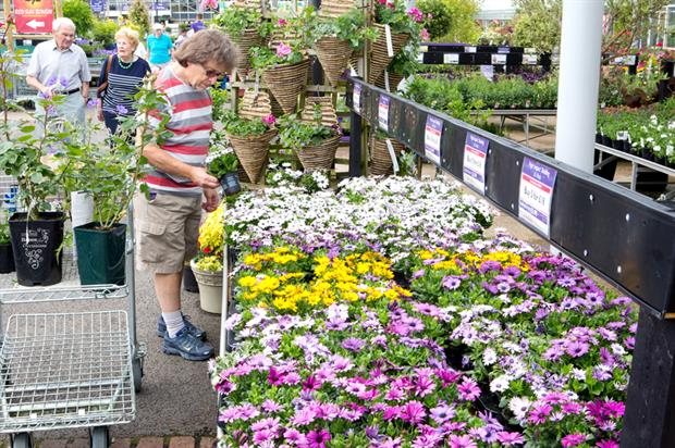 Garden centres: sales on the rise. Credit: HW