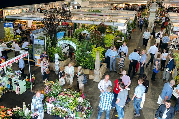 National Plant Show: exhibitors adapting to new ornamental model - image: HW