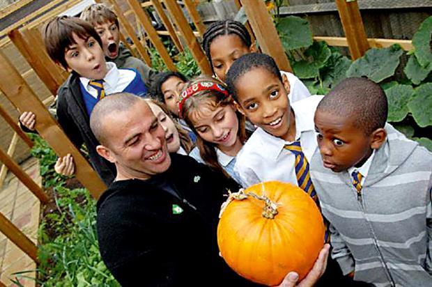 Benefits: RHS school gardening