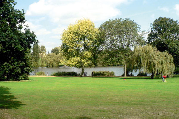 Bexley: green spaces put at risk