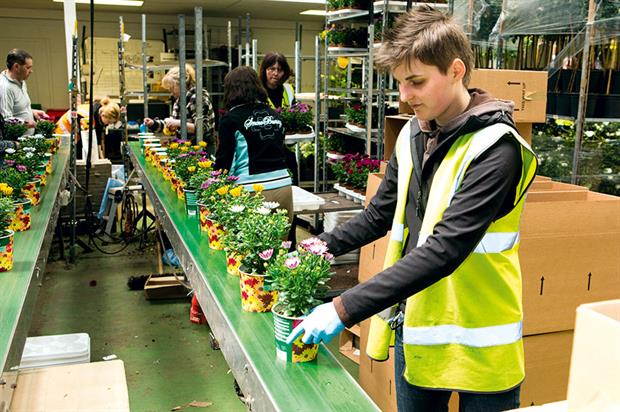 Labour: retailers required to understand working practice at all levels of the supply chain for plants and products