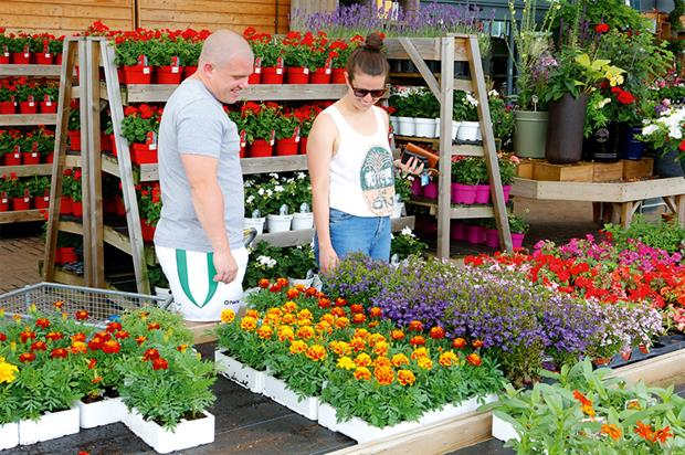 Garden centres: earliest introduction for any agreed extension to Sunday trading hours would not be until 2016 - image: HW