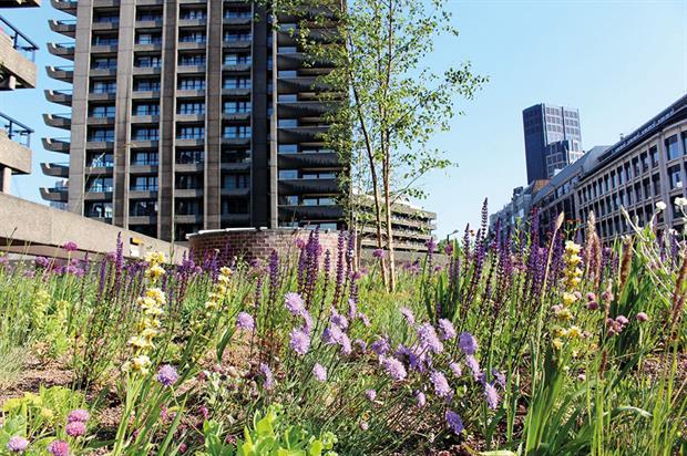 Barbican Gardens: climate change adaptation scheme - image: John Park/City of London
