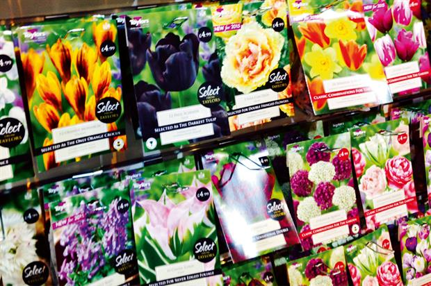 Taylors Bulbs: sees a lot of competition in the industry