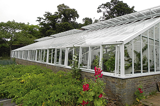 Little Priory oozes history and is dominated by a massive walled garden that supports a 23m-long lean-to greenhouse - image: HW