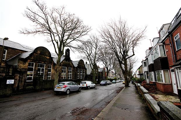 Sheffield: residents aiming to add to petition to prevent further loss of highly valued street trees across the city - image: Barrell Tree Consultancy