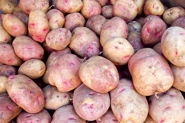 Potatoes: major new campaign that will focus on promoting the product to women as well as younger consumers - image: HW