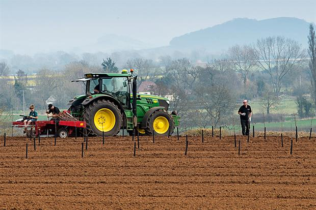 New orchard to stage trials - image: Thatchers
