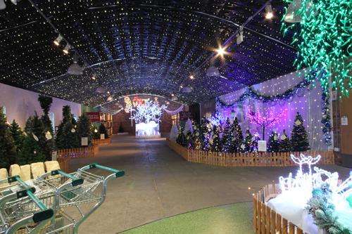Barton Grange's award-winning Christmas display - image: GCA