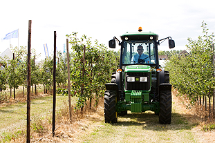 Burden Bros Agri demonstrated three machines and a trailor working on vines - image: John Deere