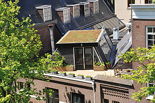 Space is at a premium in Amsterdam and green roofs are increasingly popular - image: Urban Green